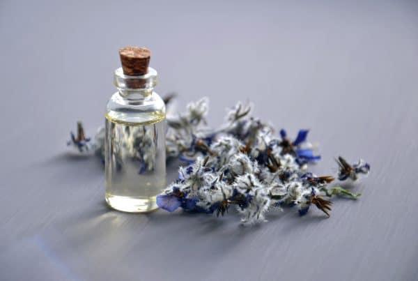 El poder del olfato
