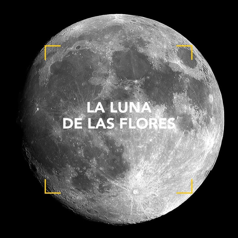 La Luna de las Flores