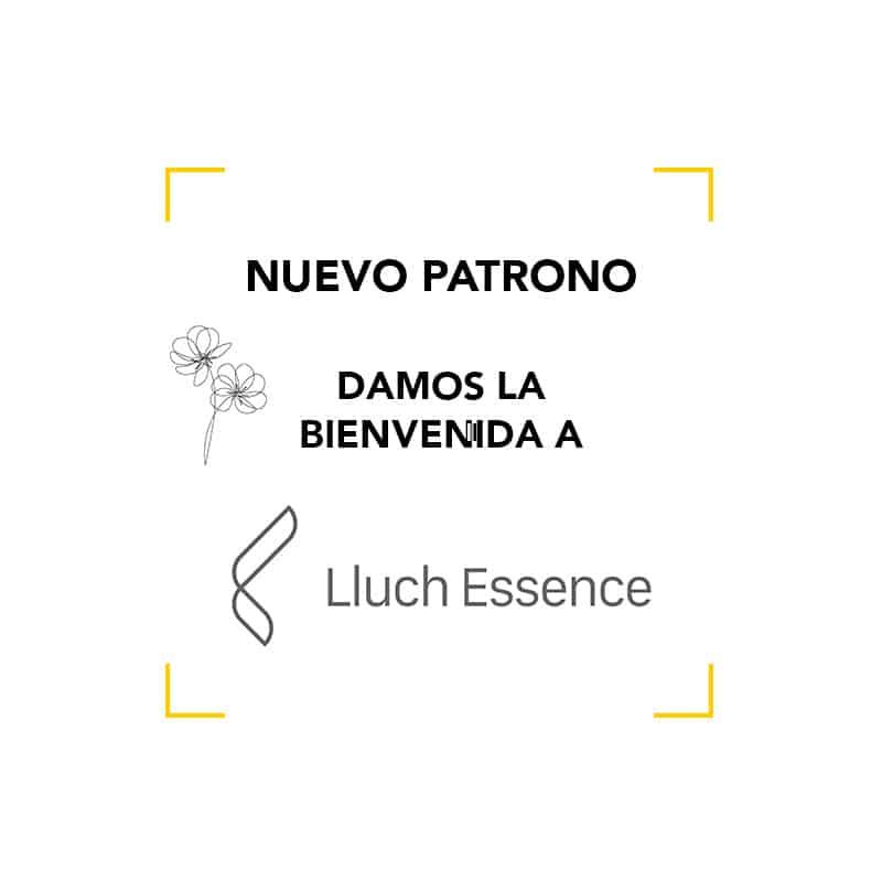 Lluch Essence se incorpora al Patronato de la Academia del Perfume
