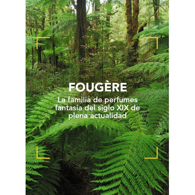 Fougère: la familia de perfumes fantasía del siglo XIX de plena actualidad