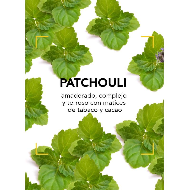 Los secretos del Patchouli