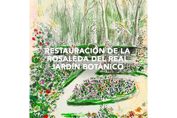 Restauración de la rosaleda del Jardín Botánico