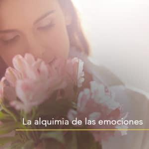 La alquimia de las emociones